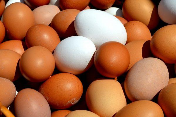 Изкупуване на яйца