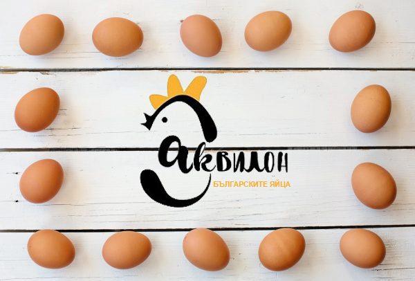 http://akvilon-am.com/wp-content/uploads/2018/05/egg-3217673_1920-600x406-1-600x406.jpg